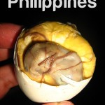 Abortion ng Balut
